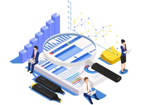 Website Audit Services by NTSPL