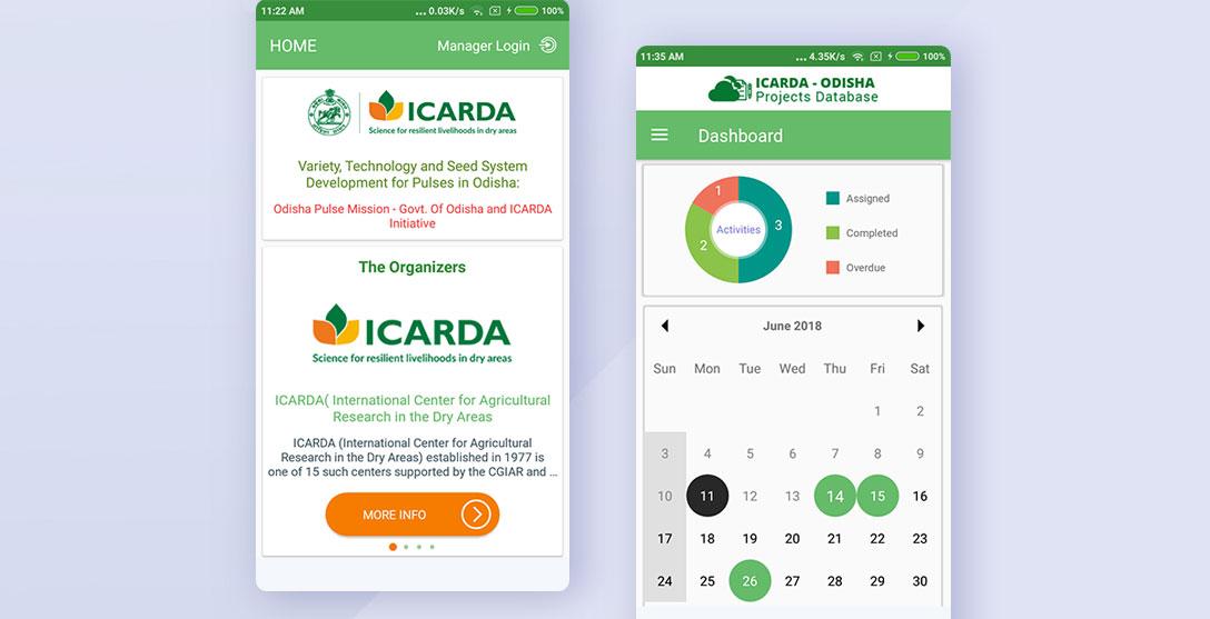 ICARDA-portfolio-details-1