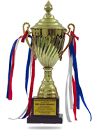 Indian Excellence Award For IT Industry 2013
